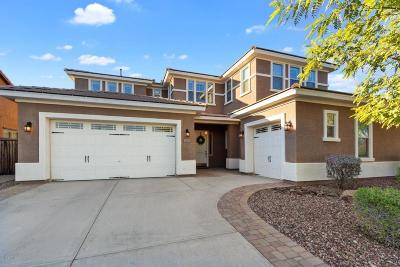 Peoria Single Family Home For Sale: 31676 N 130th Lane