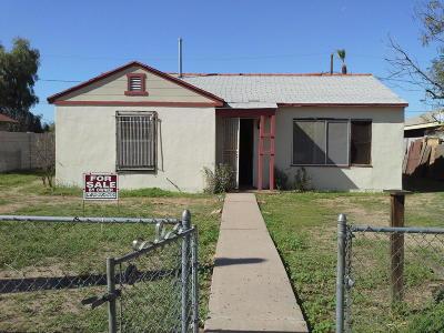 Phoenix Single Family Home For Sale: 6434 S 4th Avenue