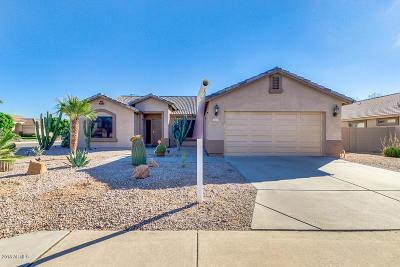 Mesa Single Family Home For Sale: 7703 E Camino Street