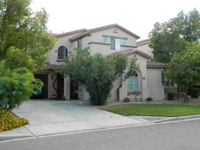San Tan Valley Single Family Home For Sale: 529 E Pasture Canyon Drive