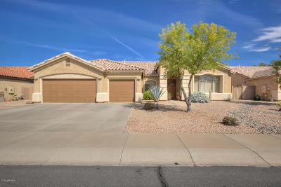 Gilbert Single Family Home For Sale: 2960 E Brooks Street