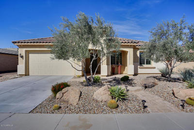 Buckeye Single Family Home For Sale: 26192 W Tina Lane