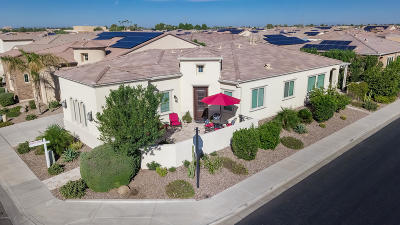 San Tan Valley Single Family Home For Sale: 37130 N Stoneware Drive
