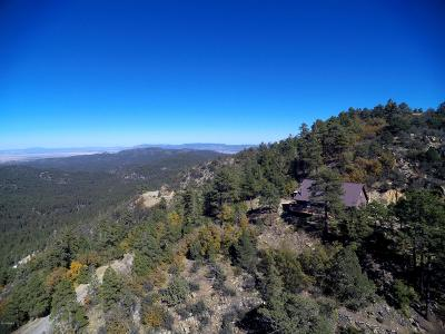 Prescott Single Family Home For Sale: 7251 S Big Bug Mesa Road