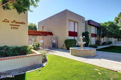 Phoenix Apartment For Sale: 1701 W Tuckey Lane #221