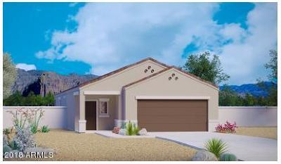 San Tan Valley Single Family Home For Sale: 28530 N Black Pearl Road