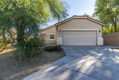 Surprise Single Family Home For Sale: 15369 W Acapulco Lane
