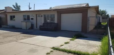 Phoenix Single Family Home For Sale: 1757 W Sunland Avenue