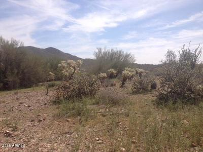 Residential Lots & Land For Sale: 42xxx N 7th Street