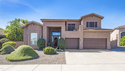Fountain Hills Single Family Home For Sale: 13046 N Ryan Way