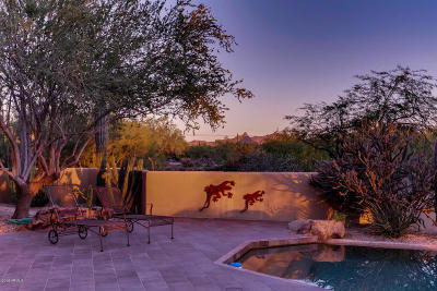 Scottsdale Single Family Home For Sale: 7365 E Dale Lane