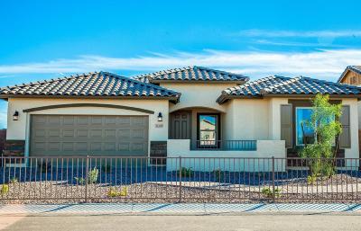 Avondale Single Family Home For Sale: 11309 W Vernon Avenue