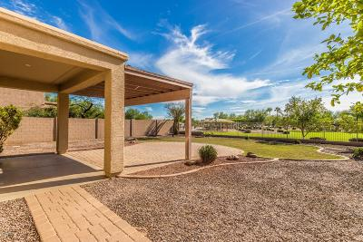 San Tan Valley Single Family Home For Sale: 545 E Kapasi Lane