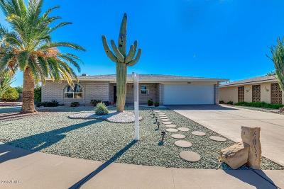 Mesa Single Family Home For Sale: 4037 E Cabana Circle