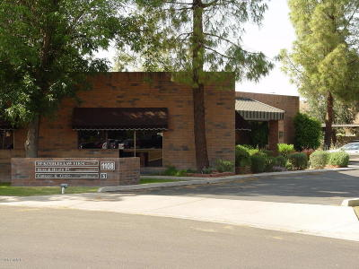 Mesa Commercial For Sale: 1108 E Greenway Street