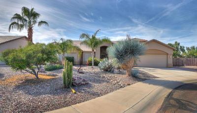 Casa Grande Single Family Home For Sale: 2475 N Granite Court