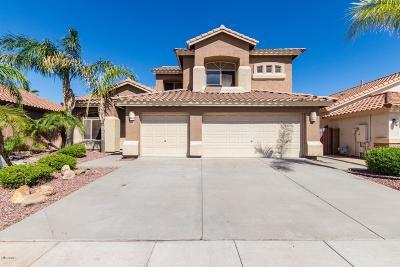 Chandler Single Family Home For Sale: 6802 W Linda Lane