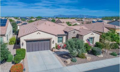 San Tan Valley Single Family Home For Sale: 810 E Harmony Way