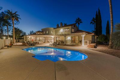 Fountain Hills Single Family Home For Sale: 10407 N Nicklaus Drive