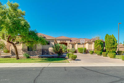 Chandler Single Family Home For Sale: 1704 S Beverly Court