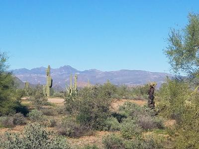 Scottsdale Residential Lots & Land For Sale: 17600 E Lone Mountain