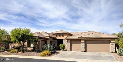 Phoenix Single Family Home For Sale: 41808 N Spy Glass Drive