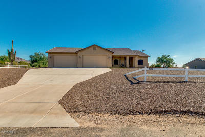 Mesa Single Family Home For Sale: 1645 N 103rd Street
