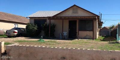 Avondale Single Family Home For Sale: 411 S 7th Street