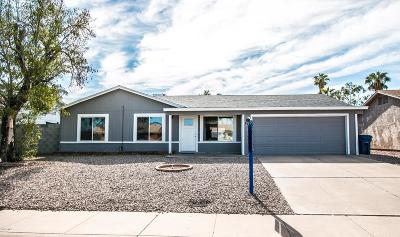 Tempe Single Family Home For Sale: 825 W Oxford Drive