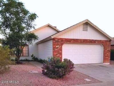 Single Family Home For Sale: 1243 W Boxelder Circle