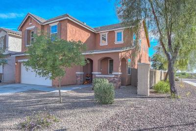 Sun City Single Family Home For Sale: 21807 N 119th Drive
