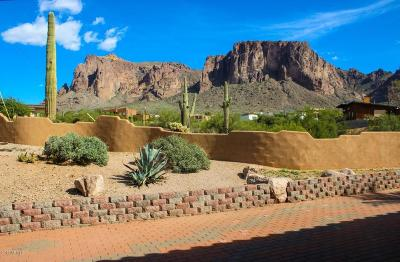 Apache Junction Single Family Home For Sale: 5580 E Lost Dutchman Boulevard