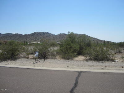 Goodyear Residential Lots & Land For Sale: 9124 S Krista Drive E