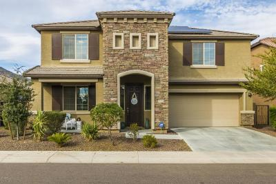 Buckeye Single Family Home UCB (Under Contract-Backups): 21434 W Terri Lee Drive