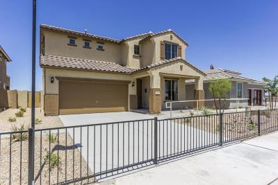 Surprise Single Family Home For Sale: 17924 W Via Del Sol