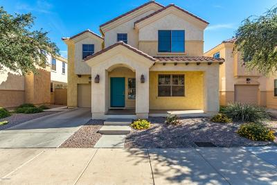 Tempe Single Family Home For Sale: 1419 S Newberry Lane