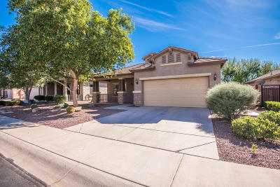 Mesa Single Family Home For Sale: 10905 E Sebring Avenue