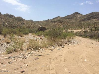 Residential Lots & Land For Sale: 0xxxx Lake Pleasant