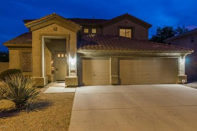 Chandler Single Family Home For Sale: 1215 W Remington Drive