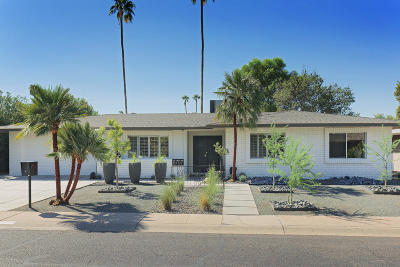 Scottsdale Single Family Home For Sale: 8707 E Heatherbrae Drive