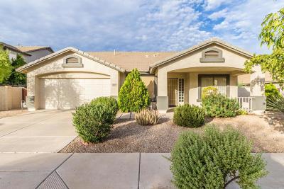 Goodyear Single Family Home For Sale: 16630 W Pierce Street