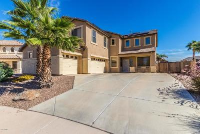 Maricopa Single Family Home For Sale: 21985 N Backus Drive