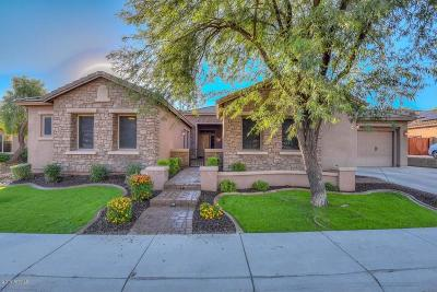 Phoenix Single Family Home For Sale: 26112 N 49th Lane