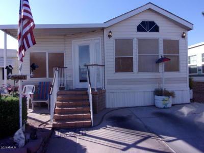 Apache Junction Residential Lots & Land For Sale: 137 W Kiowa Circle