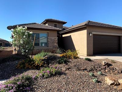 Eloy Single Family Home For Sale: 4403 W Box Canyon Drive