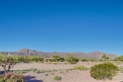 Gold Canyon Residential Lots & Land For Sale: 3873 S Gambel Quail Way