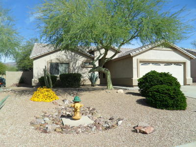 Sunrise At Gold Canyon Ranch Rental For Rent: 8858 E Amber Sun Way