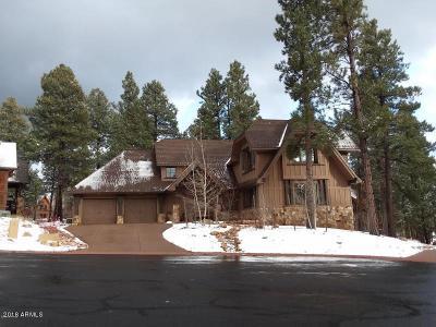 Flagstaff Single Family Home For Sale: 1711 E Elysian Court