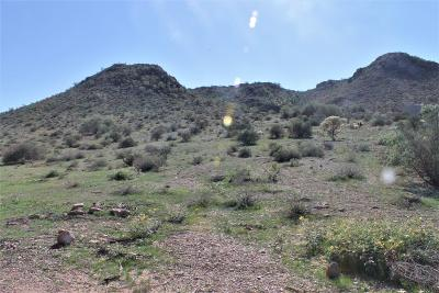Apache Junction Residential Lots & Land For Sale: E 35th Avenue