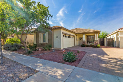 Gilbert, Mesa Single Family Home For Sale: 2034 S Falcon Drive